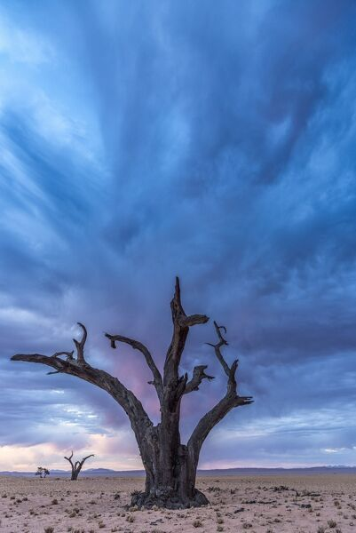 Africa, Namibia, Hardap region. A romantic sunset