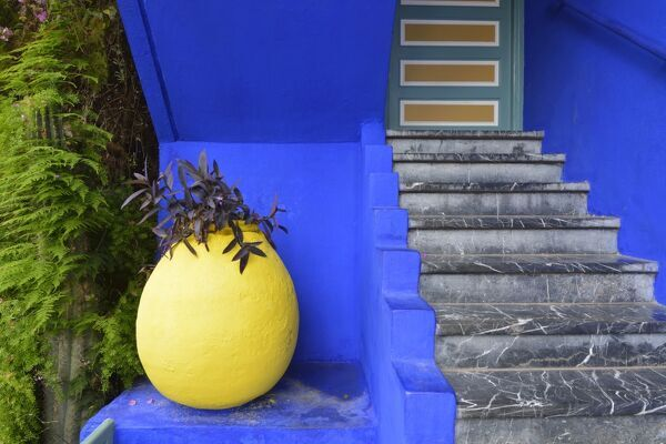 The blue and yellow contrast found in the Majorelle garden. Marrakech, Morocco