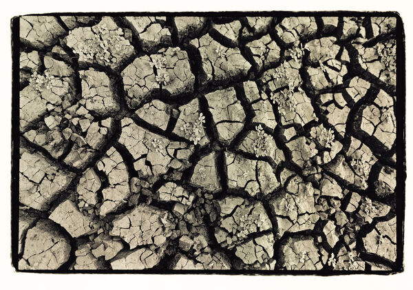 Dry, cracked, parched earth in South Luangwa Valley National Park, Zambia