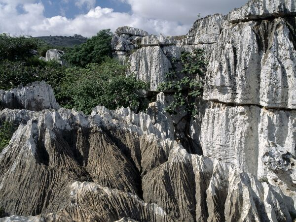Karst limestone in the Homhil Mountains. The island is composed of igneous and metamorphic rocks of pre-Cambrian age overlain by a limestone plateau. This plateau drops in steep, almost vertical, escarpments to the coastal plains or directly to the