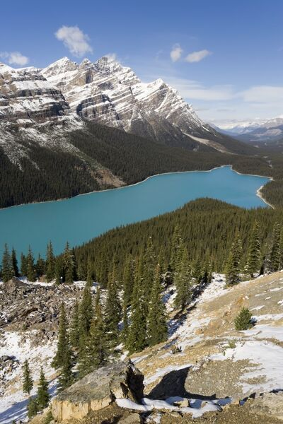 Peyto Lake, coloured by glacial silt, Banff-Jasper National Parks, Canada Peyto Lake, coloured by glacial silt, Banff-Jasper National Parks, Canada, North America