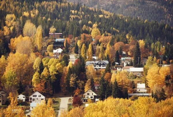 Rossland, British Columbia, Canada CANADA-British Columbia-Rossland: Autumn Foliage Former Mining, now Ski Town (c) Walter Bibikow 2003