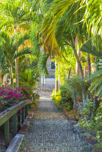 U.S. Virgin Islands, St. Thomas, Charlotte Amalie, The 99 Steps