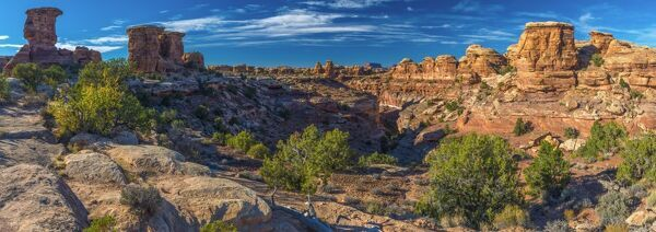 USA, Utah, Canyonlands National Park, The Needles District, Big Spring Canyon Overlook