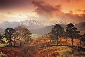 Borrowdale, Lake District, Cumbria, England