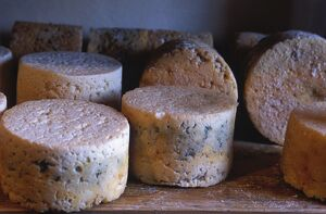 Cabrales cheese is a regional speciality of Asturias