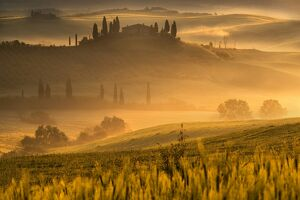 Europe, Italy, Belvedere farmhouse at dawn, province of Siena, Tuscany
