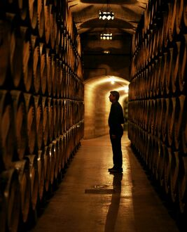 The foreman of works inspects barrels of Rioja wine
