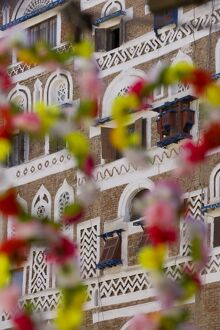 Frontage of buildings & floral decorations, Sana'a, Yemen
