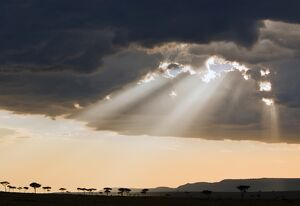 Late afternoon sun breaks through rain clouds in the Masai Mara National Reserve