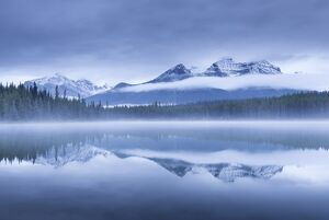 Misty morning at Herbert Lake in the Canadian Rockies, Banff National Park, Alberta