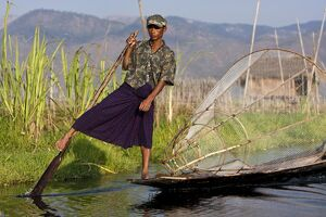 Myanmar, Inle Lake. Intha fisherman with traditional conical fish net, gently paddling