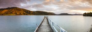 Sunset over picturesque wharf in idyllic Kenepuru Sound, Marlborough Sounds, South Island