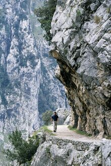 Trekker walks the trail through the Cares Gorge
