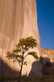 USA, Arizona, Canyon de Chelly National Monument