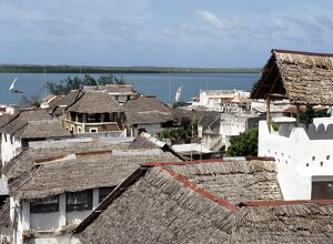 A view over makuti thatched roofs to the estuary that