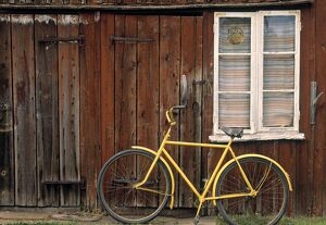 Wooden house & bike