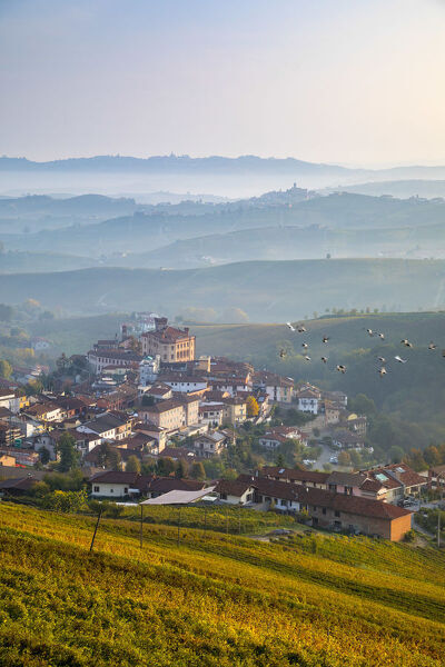 Italy, Piedmont (Piemonte), Colline del Barolo, Cuneo district, Langhe, Barolo, the village & castello Falletti di Barolo