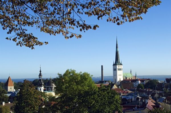 Panoramic City View of the City Wall Towers and St Olav Church, Located in the Unesco World Heritage Old Town The Baltic States, Estonia, Tallinn, Panoramic City View of the City Wall Towers and St Olav Church, Located in the Unesco World Heritage