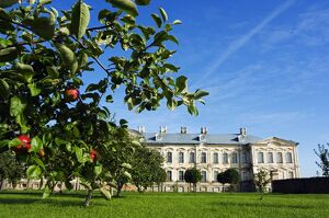 Apple trees in Palace Gardensof the Baroque Style Rundales Palace