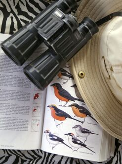 Bird book, binoculars and safari hat