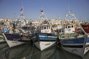 Boats moored in the busy fishing port in Tangier, Morocco