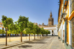 Court of Banderas with the Giralda tower of the Cathedral, UNESCO World Heritage Site