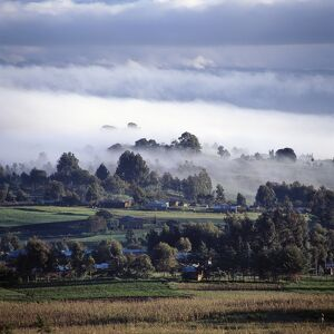 Early morning mist in Tanzania's Southern Highlands.