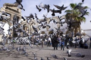 Feeding the pigeons in front of the remains of the
