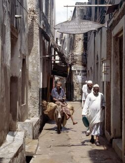 A man rides a donkey in one of the narrow streets of Lamu town