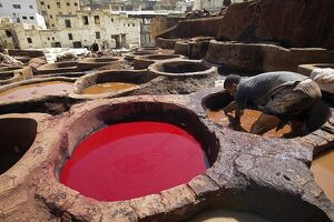A man working in the tanneries in Old Fez, Morocco
