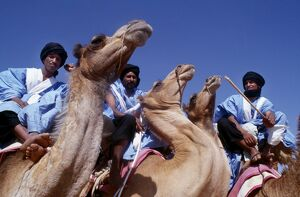 Meharistes', Soldiers Of The Desert, annual camel race