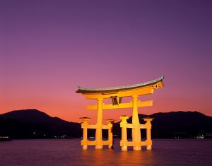 Miyajima Island / Itsukushima Shrine / Torii Gate / Night View