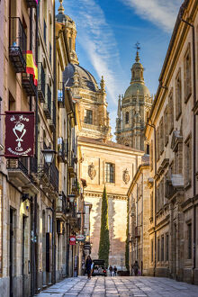 Street on the old town, Salamanca, Castile and Leon, Spain