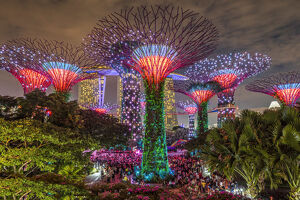 The Supertree Grove light show at Gardens by the Bay nature park, Singapore