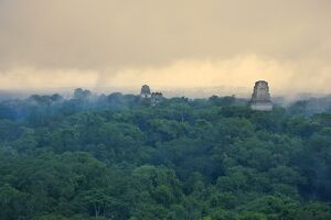Tikal Pyramid ruins (UNESCO site) and rainforest