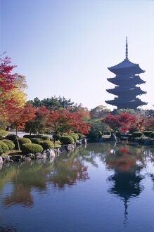 Toji Temple (Kyo-o-gokoku-ji / Five-storey Pagoda & Autumn Leaves