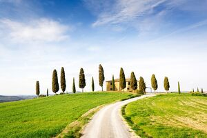 tuscany/tuscany spring landscape rolling hills cypress