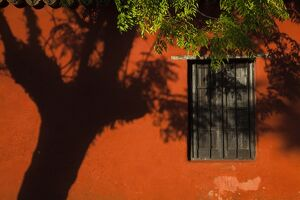 Uruguay, Colonia de Sacramento, Casa Nacarello Museum, wall detail, morning