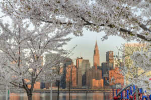 USA, American, New York, Chrysler Building and Midtoen Skyline from Long Island City
