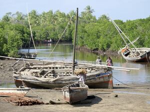 Wooden sailing boats anchor at the end of the mangrove-lined